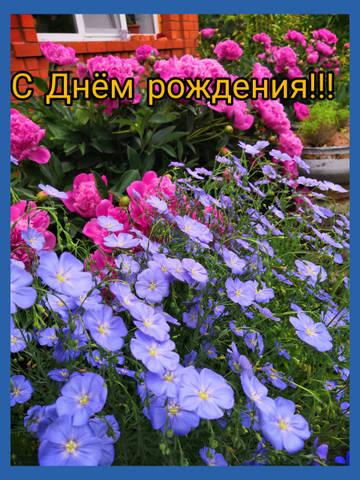 http://s9.uploads.ru/t/NWU4R.jpg