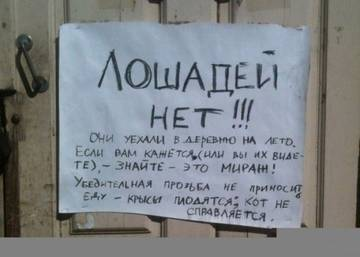 http://s9.uploads.ru/t/NWiQR.jpg