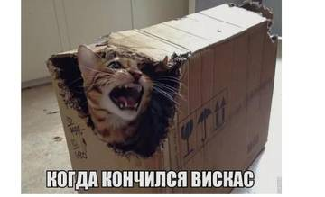 http://s9.uploads.ru/t/Nom02.jpg