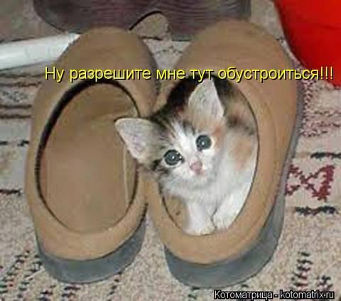 http://s9.uploads.ru/t/NriDS.jpg