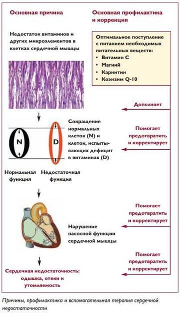 http://s9.uploads.ru/t/OAK5w.jpg