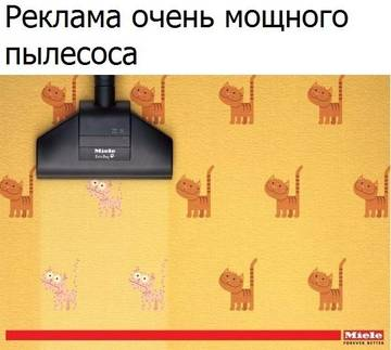 http://s9.uploads.ru/t/P1vaw.jpg