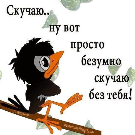 http://s9.uploads.ru/t/PR6Ao.jpg