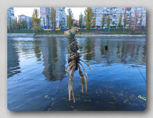 http://s9.uploads.ru/t/QEXOU.jpg