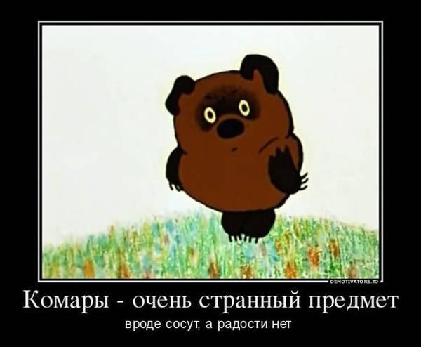 http://s9.uploads.ru/t/QZ2la.jpg
