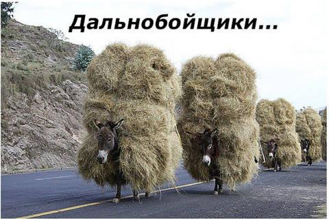 http://s9.uploads.ru/t/RDVPL.jpg