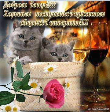 http://s9.uploads.ru/t/S9jy6.jpg