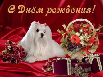 http://s9.uploads.ru/t/SnBPa.jpg