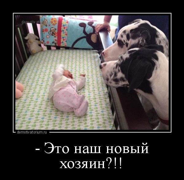 http://s9.uploads.ru/t/Stxsi.jpg