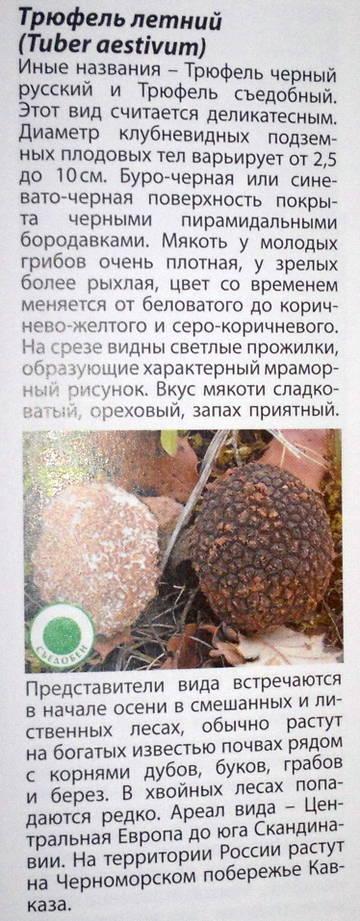 http://s9.uploads.ru/t/TRbX7.jpg