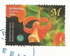 http://s9.uploads.ru/t/Tqguo.jpg