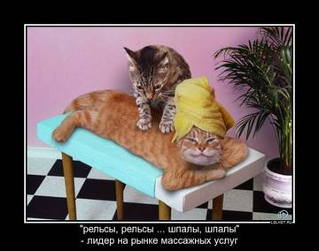 http://s9.uploads.ru/t/Tt6jQ.jpg