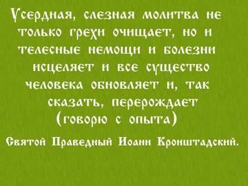 http://s9.uploads.ru/t/TwIOF.jpg