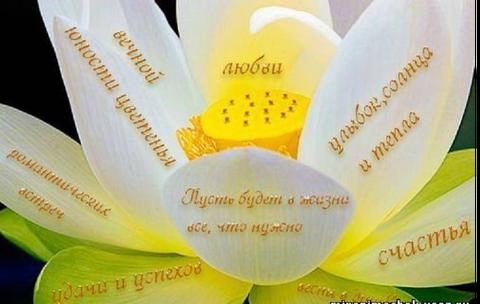 http://s9.uploads.ru/t/TyUVd.png