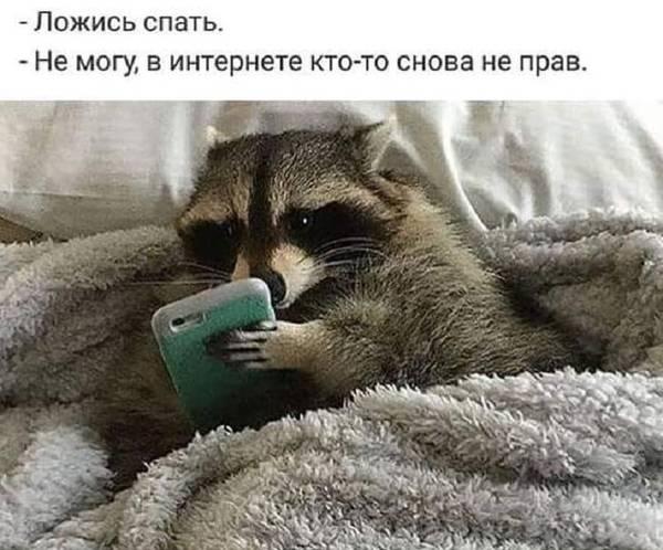 http://s9.uploads.ru/t/U6Czq.jpg