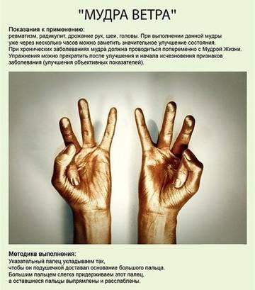 http://s9.uploads.ru/t/URPc6.jpg