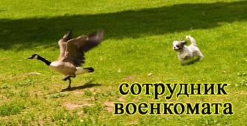 http://s9.uploads.ru/t/Uhpa1.jpg