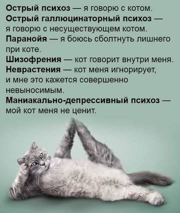 http://s9.uploads.ru/t/UiV9N.jpg