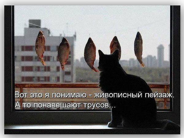 http://s9.uploads.ru/t/VFvpf.jpg