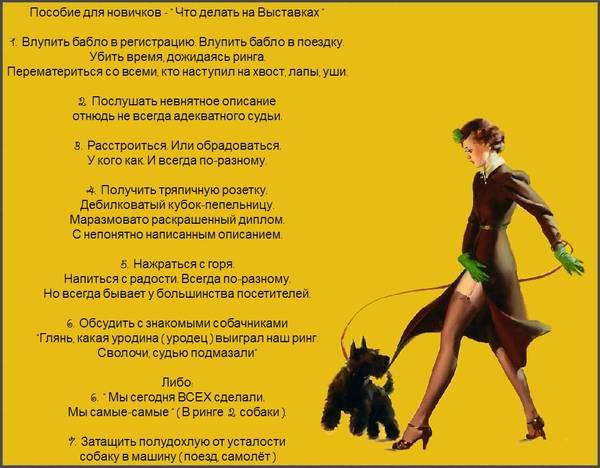 http://s9.uploads.ru/t/VOP30.jpg