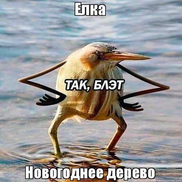 http://s9.uploads.ru/t/VnCmb.jpg