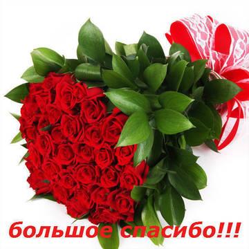 http://s9.uploads.ru/t/VpMvI.jpg