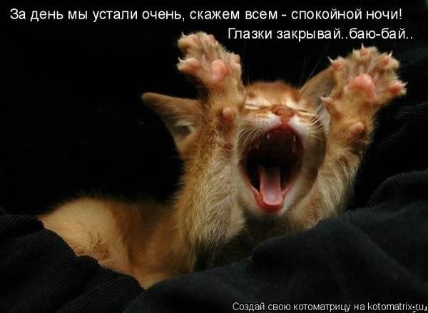 http://s9.uploads.ru/t/W1CpR.jpg