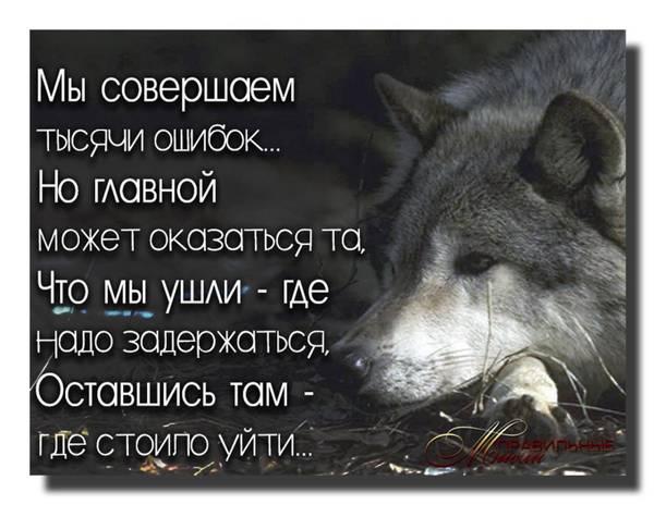 http://s9.uploads.ru/t/W6MyA.jpg