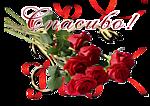 http://s9.uploads.ru/t/Wmptc.png