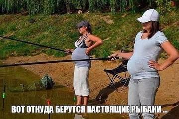 http://s9.uploads.ru/t/XHpkL.jpg