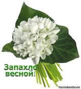 http://s9.uploads.ru/t/Xa91g.jpg