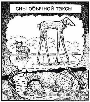 http://s9.uploads.ru/t/XzsGg.jpg