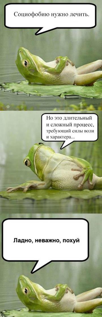 http://s9.uploads.ru/t/YjepP.jpg