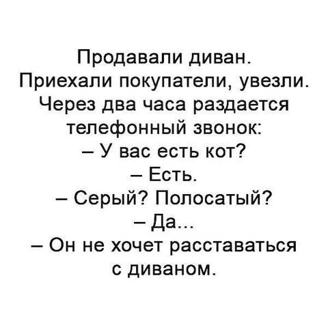 http://s9.uploads.ru/t/YrdZt.jpg