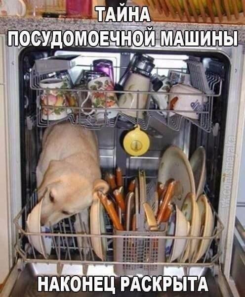 http://s9.uploads.ru/t/ZJzk4.jpg