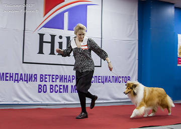 http://s9.uploads.ru/t/ZW8EN.jpg