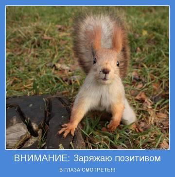 http://s9.uploads.ru/t/ZxmTo.jpg