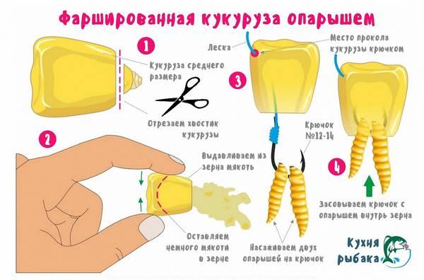 http://s9.uploads.ru/t/a4eFI.jpg