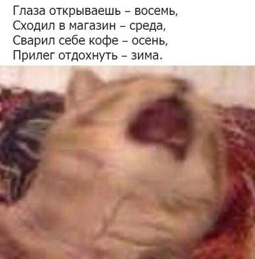 http://s9.uploads.ru/t/aGD7O.png