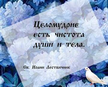http://s9.uploads.ru/t/aHkqI.jpg