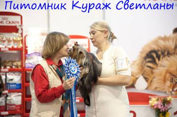 http://s9.uploads.ru/t/aVZl3.jpg