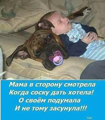 http://s9.uploads.ru/t/asION.jpg