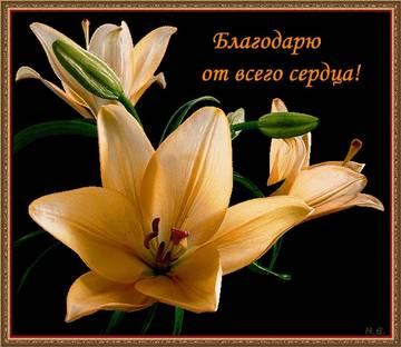 http://s9.uploads.ru/t/bhveV.jpg