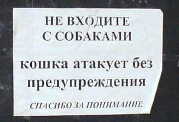 http://s9.uploads.ru/t/c8KQl.jpg