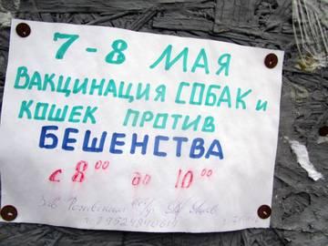 http://s9.uploads.ru/t/cRsxq.jpg