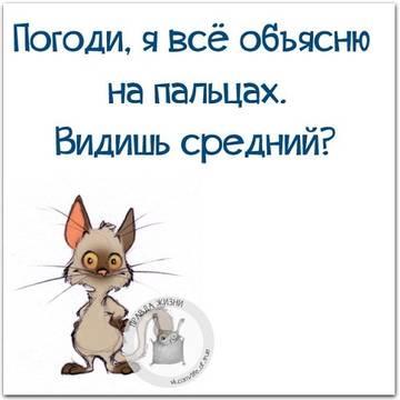 http://s9.uploads.ru/t/cVhAf.jpg