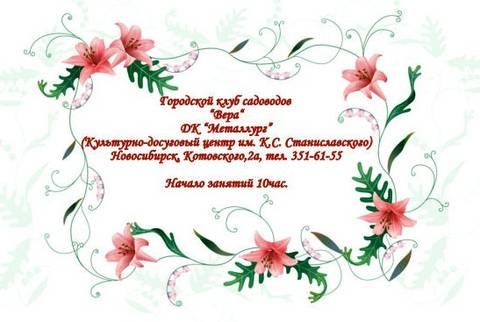 http://s9.uploads.ru/t/cVrRC.jpg