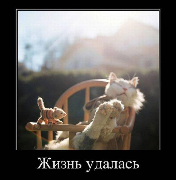 http://s9.uploads.ru/t/chyYs.jpg