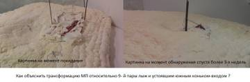 http://s9.uploads.ru/t/co8vh.jpg