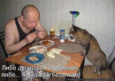 http://s9.uploads.ru/t/cuQJn.jpg